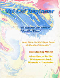 Book Cover TAI CHI BEGINNER by Buddha Z